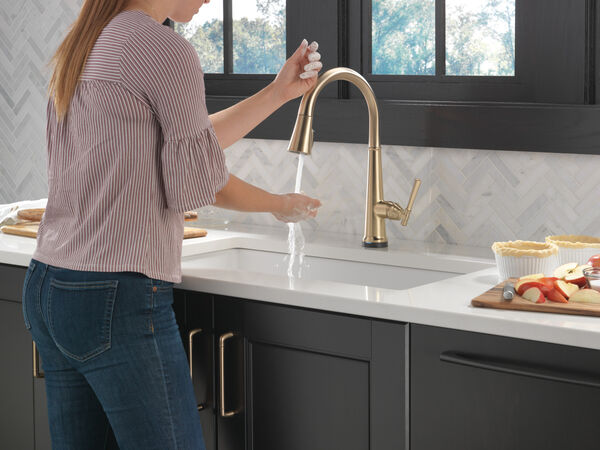 Single Handle Pull Down Kitchen Faucet with Touch2O Technology, image 6