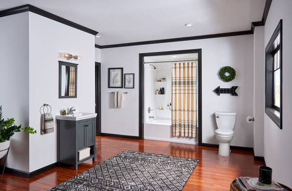Single Handle Tub and Shower, image 9
