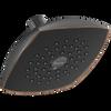 Touch-Clean Raincan Single-Setting Shower Head