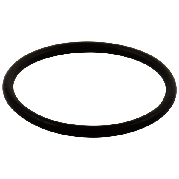 O-Ring - Large - All Monitor® Series, image 1