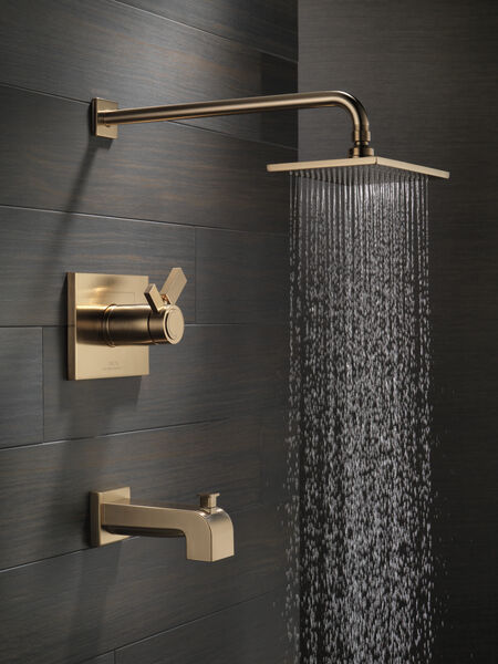 TempAssure® 17T Series Tub & Shower Trim, image 2