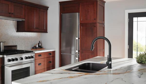 Single Handle Pull Down Kitchen Faucet 9159 Bl Dst Delta Faucet