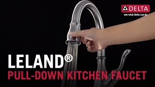 Leland<sup>&reg;</sup> Pull-Down Kitchen Faucet