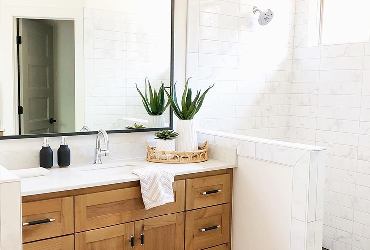 bathroom with small decorative cactus