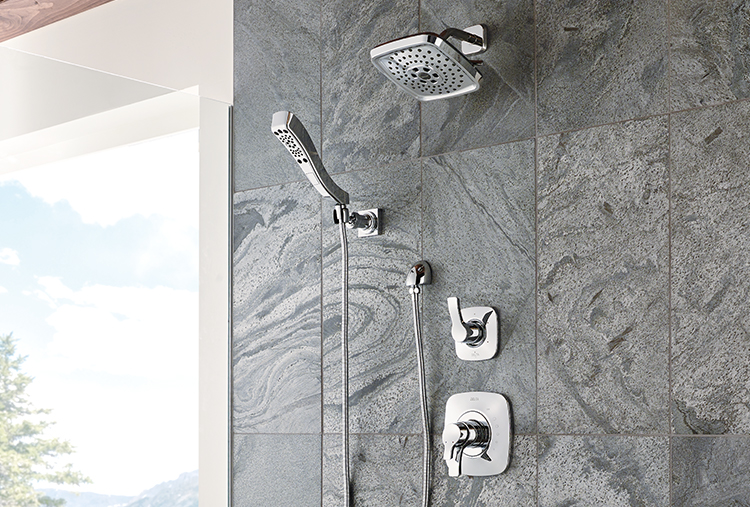 Delta Faucet Tesla Shower Head and Hand Shower